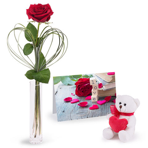 Love exhibition Combo: Red Rose and Teddy Bear